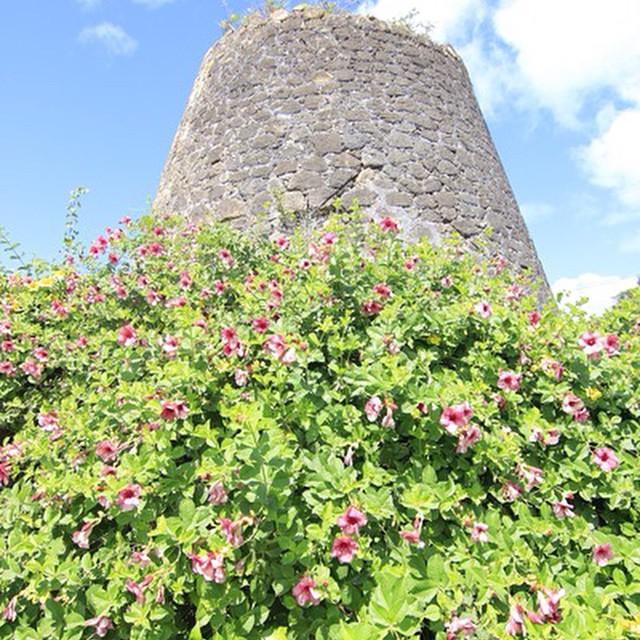Victory Villas Antigua: the Heritage
